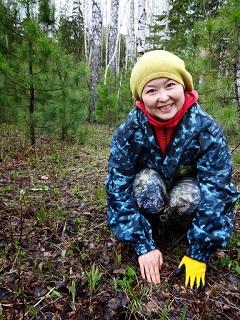 タイガの森の旅の様子